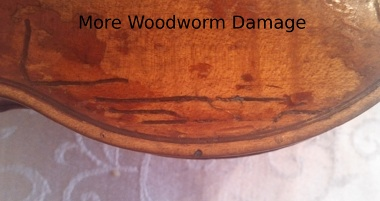 Are The Holes In My Violin Or Cello Due To Woodworms